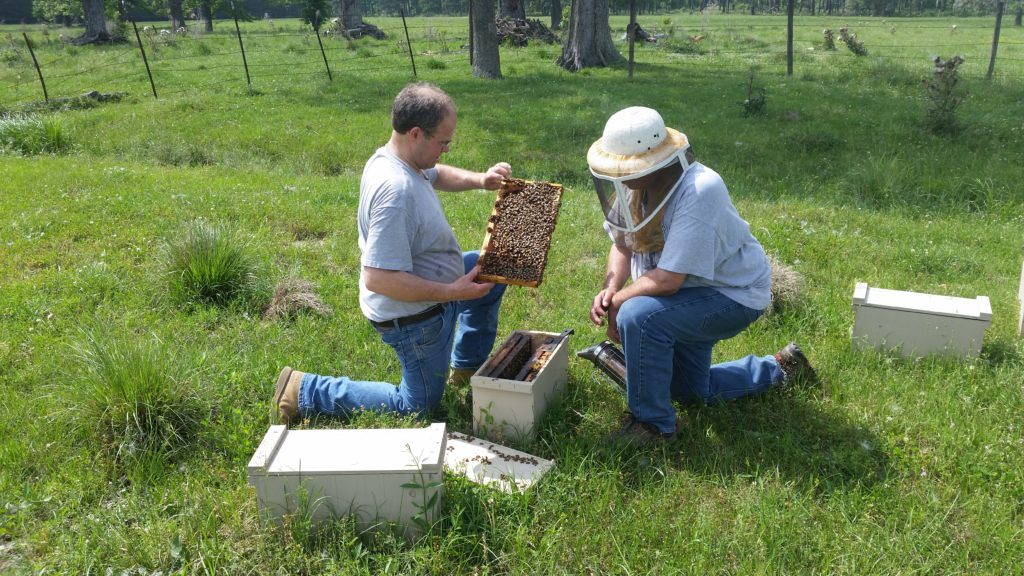 Checking 4 frame nucs in TX